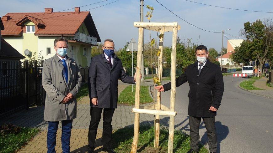 Samorządowcy gminy Zwoleń posadzili ponad sto drzew!