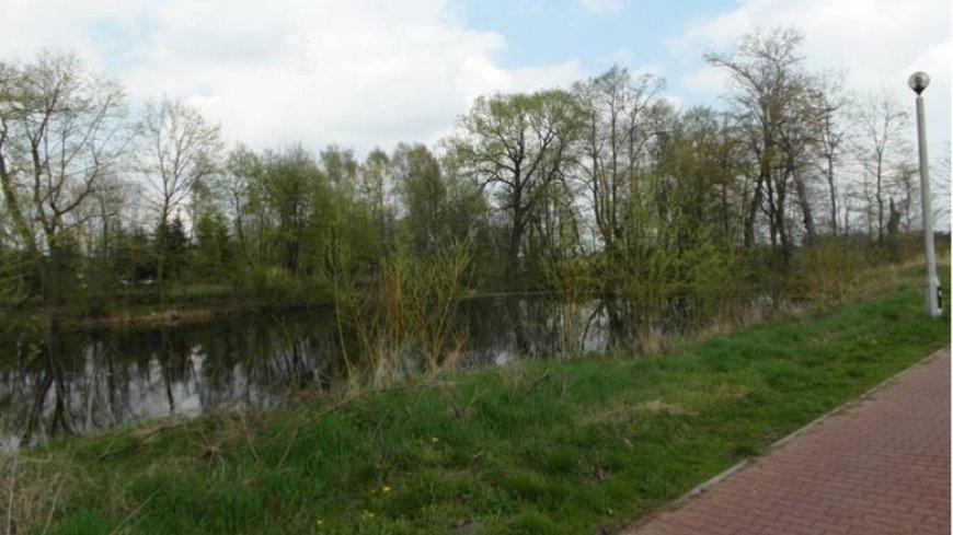Obszar jednej z działek przeznaczonych pod utworzenie miejsca rekreacyjnego jest pozostałym fragmentem części parkowej.